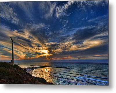 Metal Print featuring the photograph Birdy Bird At Hilton Beach by Ron Shoshani