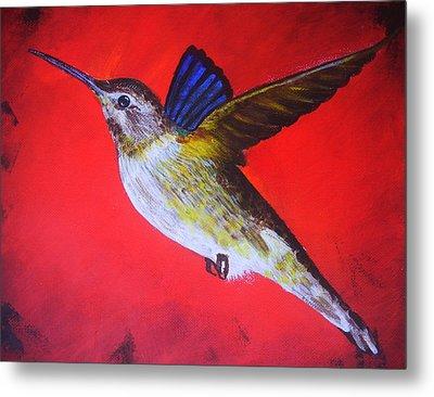 Bird In Red Background Metal Print