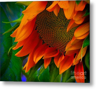 Birth Of A Sunflower Metal Print