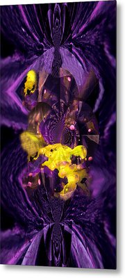 Metal Print featuring the photograph Birth Of Universe by Robert Kernodle