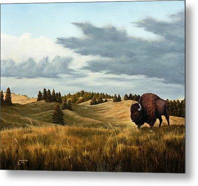 Bison  Wind Cave Park  South Dakota Metal Print by Rick Bainbridge