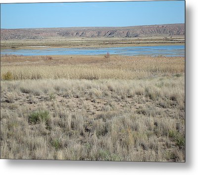Bitter Lake Metal Print by Susan Woodward