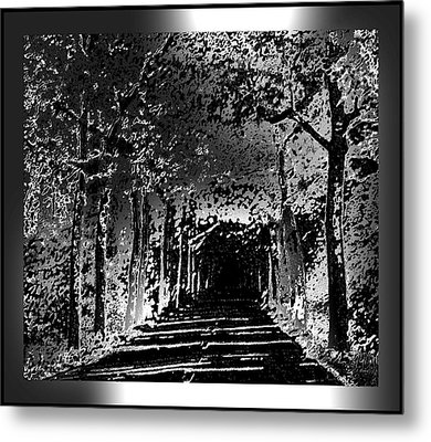 Black And Silver With Border Metal Print by L Brown