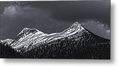 Black And White Deer Mountain  005 Metal Print by Timothy Latta