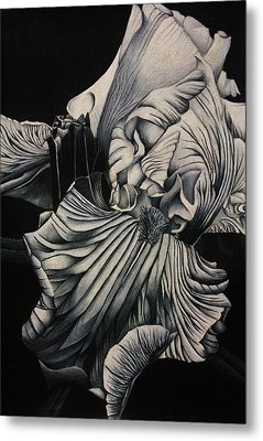Black And White Iris Study Metal Print by Bruce Bley