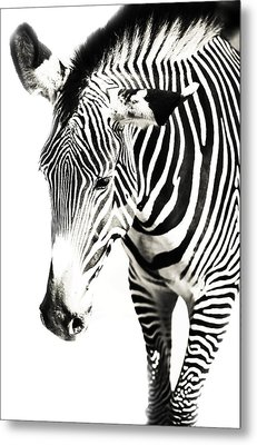 Black And White Metal Print by Jenny Rainbow