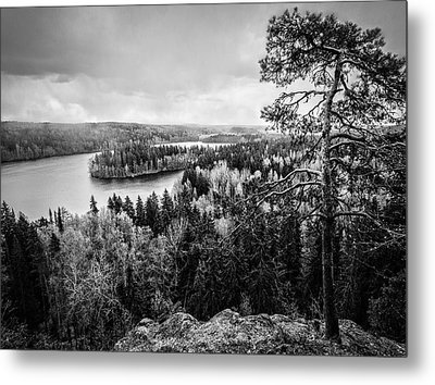 Black And White Lake View Metal Print