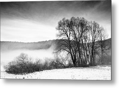 Black And White Winter Landscape With Trees Metal Print by Matthias Hauser