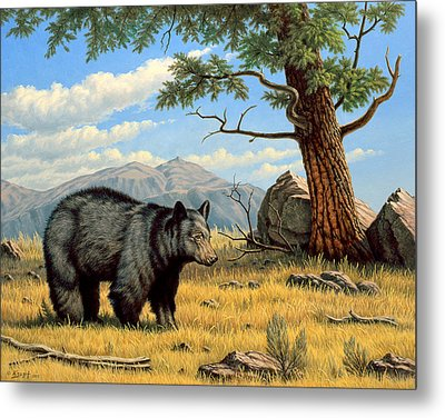 Black Bear Above Lamar Metal Print