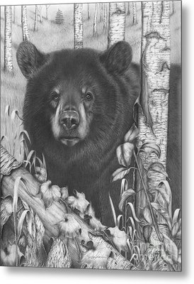 Black Bear On Newsome Creek Metal Print