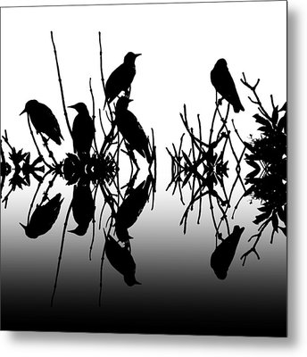 Black Birds Metal Print by Sharon Lisa Clarke