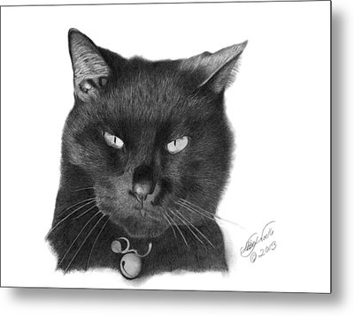 Metal Print featuring the drawing Black Cat - 008 by Abbey Noelle