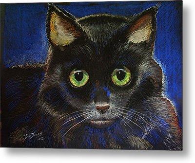 Black Cat Metal Print by Dan Terry