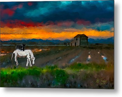Metal Print featuring the photograph Black Cat On A White Horse by Juan Carlos Ferro Duque