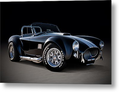 Black Cobra Metal Print by Douglas Pittman