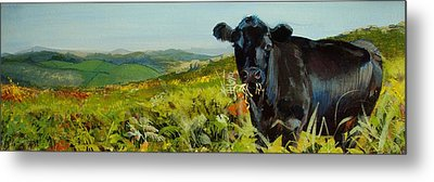 Black Cow Dartmoor Metal Print