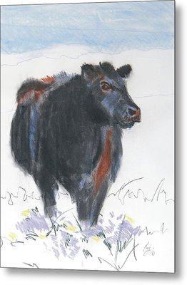 Black Cow Drawing Metal Print