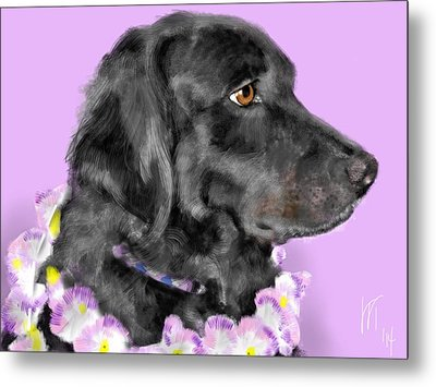 Black Dog Pretty In Lavender Metal Print by Lois Ivancin Tavaf