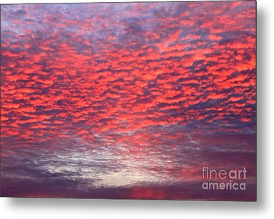 Black Friday Sunrise Metal Print