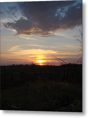 Metal Print featuring the photograph Black Hills Sunset IIi by Cathy Anderson