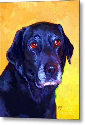 Black Labrador Art Metal Print by Iain McDonald