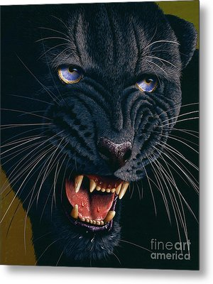 Black Panther 2 Metal Print by Jurek Zamoyski