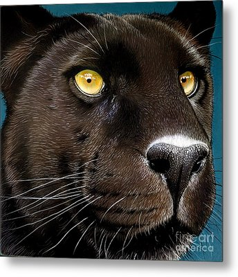 Black Panther Metal Print by Jurek Zamoyski
