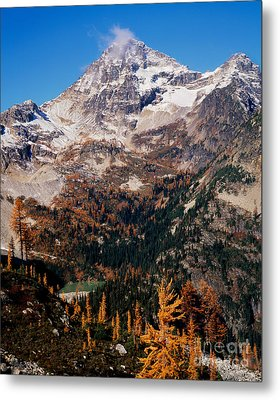 Black Peak Above Maple Pass Metal Print by Tracy Knauer