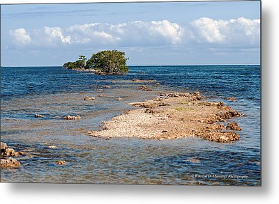 Black Point Marina - Cutler Bay Metal Print