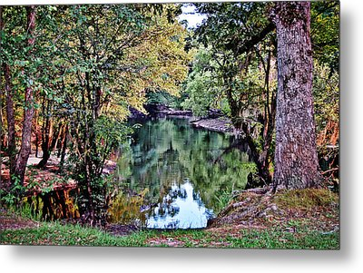 Metal Print featuring the photograph Black River Reflections by Linda Brown