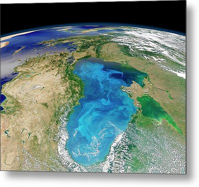 Black Sea Phytoplankton Bloom Metal Print by Nasa/norman Kuring