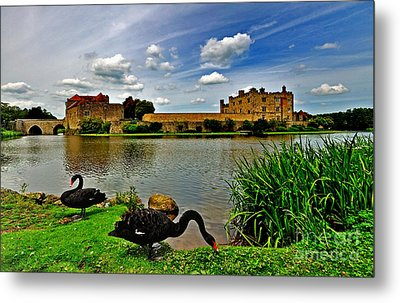 Black Swans At Leeds Castle II Metal Print