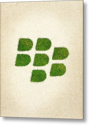Blackberry Grass Logo Metal Print by Aged Pixel
