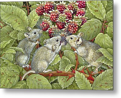 Blackberrying Metal Print by Ditz