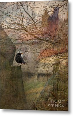 Blackbird Metal Print by Liz  Alderdice