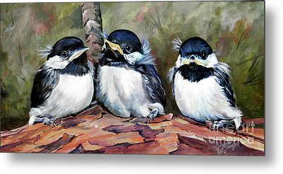 Blackcapped Chickadee Babies Metal Print by Suzanne Schaefer