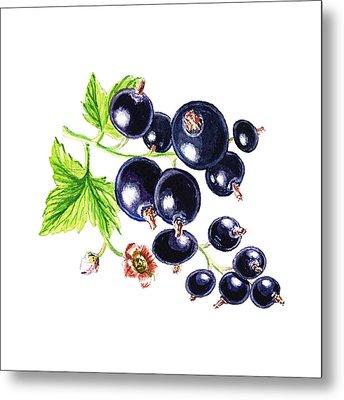 Blackcurrant Happy Berries Metal Print by Irina Sztukowski