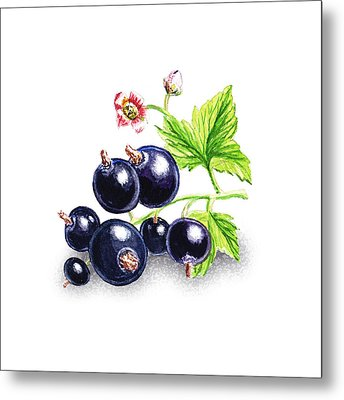 Metal Print featuring the painting Blackcurrant Still Life by Irina Sztukowski