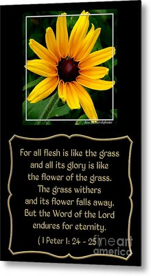 Blackeyed Susan With Bible Quote From 1 Peter Metal Print by Rose Santuci-Sofranko