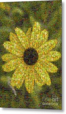 Blackeyed Suzy Mosaic Metal Print by Darleen Stry