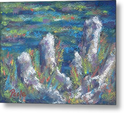 Blackwater Cypress Knees Metal Print