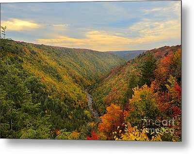 Blackwater Gorge With Fall Leaves Metal Print by Dan Friend