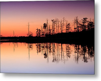 Metal Print featuring the photograph Blackwater Reflections by Jennifer Casey