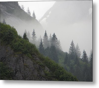 Metal Print featuring the photograph Blanket Of Fog by Jennifer Wheatley Wolf