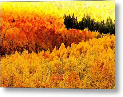 Blazing Mountainside Metal Print by The Forests Edge Photography - Diane Sandoval