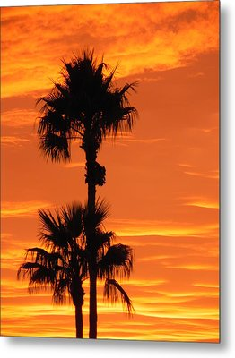 Metal Print featuring the photograph Blazing Sunset by Deb Halloran
