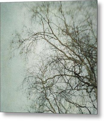 bleakly II Metal Print by Priska Wettstein