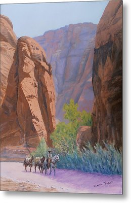 Blessed Shade In The Canyon Metal Print by Elaine Jones