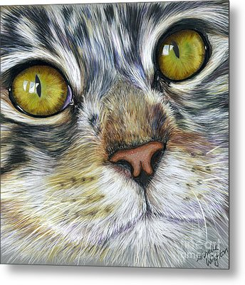 Stunning Cat Painting Metal Print by Michelle Wrighton