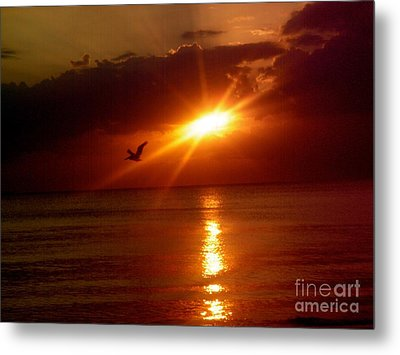Blood Red Sunset Metal Print by Carla Carson